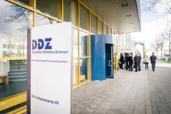 Deutsches Diabetes-Zentrum